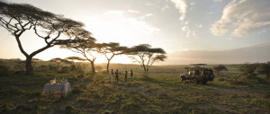 TANZA-SerengetiPanoramicSundowner